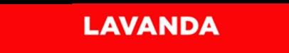 logo_lavanda__PNG